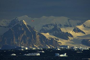 British Antarctic Survey airplane in flight over the Antarctic Peninsula. Antarctica, February 2009