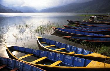 Tourist boats flooded by monsoon rains on the edge of Lake Phewa. Pokhara, Nepal, Asia.