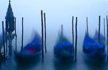 Slow exposure of gondolas moored at dawn in the fog. Grand Canal, St Marks Square, Venice, Italy.