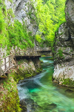 Long exposure of river of Vintgar Gorge with boardwalk, Bled, Slovenia. July 2016