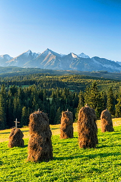 Haystacks in front of the Tatra mountains, Poland, September 2014.