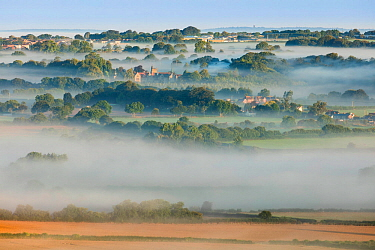The Cranborne Chase from Charlton Down, Wiltshire, England. August 2016