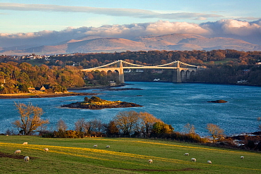 Menai Suspension Bridge joining Anglesey and Wales over the Menai Strait, Wales. January 2008