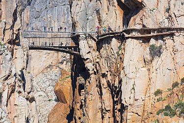 Camino del Rey walkway through Gorge of the Gaitanes / Desfiladero de los Gaitanes, Alora, Malaga, Andalusia, Spain. January 2018.