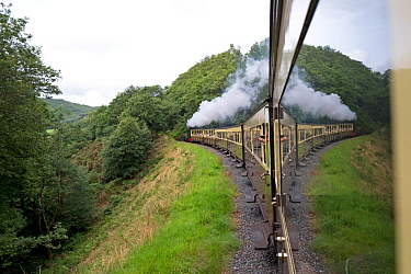 View out of train on the Ceredigion The Vale of Rheidol Railway, Wales, UK. August.