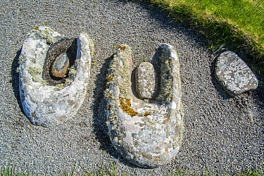 Stone querns at Jarlshof, archaeological site showing 2500 BC prehistoric and Norse settlements at Sumburgh Head, Shetland Islands, Scotland, UK