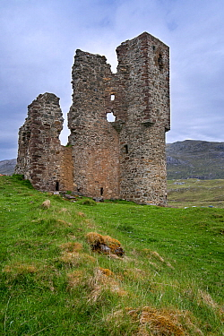 Tourists visiting 16th century Ardvreck Castle ruin at Loch Assynt in the Scottish Highlands, Sutherland, Scotland, UK, May 2017