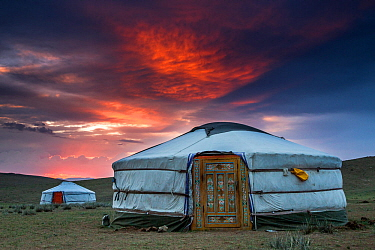 Film crew working on Big Cats series lived for 4 weeks in gers / yurts when filming the rare Pallas's cat. Altanbulag, Mongolia 2017