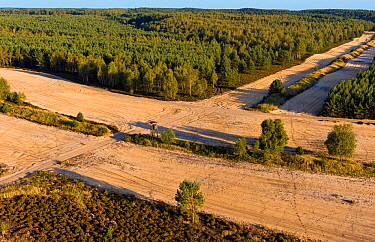 Military training ground, with bare land to prevent fires from spreading if caused during training manoeuvrers. This area is habitat to a population of wild Wolves (Canis lupus) as well as other rare...