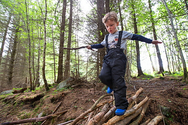 Boy exploring woodland during forest kindergarten session. Aberdeen, Aberdeenshire, Scotland, UK. Editorial use only