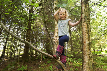 Girl climbing tree in woodland during forest kindergarten session. Aberdeen, Aberdeenshire, Scotland, UK. Editorial use only