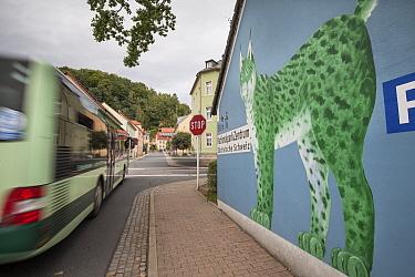Mural on wall as part of Eurasian lynx (Lynx lynx) branding in town. Bad Schandau, Germany.