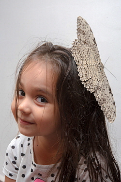 Girl with a large White Witch moth (Thysania agrippina) on her head. Iquitos, Peru. Model released.