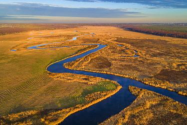 Suur Emiaogi River meandering through meadows and marshland, aerial view at sunset. Alam-Pedja Nature Reserve, Tartumaa, Southern Estonia. November 2018.