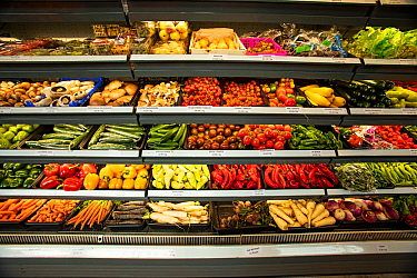Various fruit and vegetables on display in a super market, North London, England, UK.