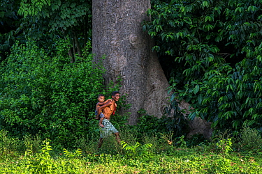 Batak village chief carrying his son past a large tree, Sitio Manggapin, Cleopatra's Needle Critical Habitat, Palawan, the Philippines.