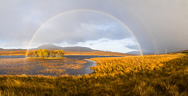 Double rainbow emmerging from rain shower over Loch Awe, Assynt, Scotland, UK, November 2016.