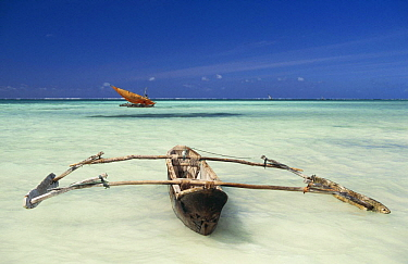Dug-out outrigger and Dhow in the shallows off a beach in Eastern Zanzibar, Tanzania, Africa.
