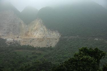 Delacour's langurs (Trachypithecus delacouri) habitat showing the impact of karst limestone mining for cement to fuel growing development in Vietnam, Kim Bang, Vietnam