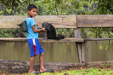 Monk Saki (Pithecia monachus) captive with its owner, a boy from the Siona tribe, Cuyabeno wildlife reserve, Sucumbios, Amazon rainforest, Ecuador, July