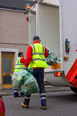 Swansea city council recycling team collecting domestic recycled materials in urban terraced house area, Hafod Swansea, Wales, UK 2009