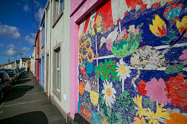Community art in urban street depicting wildlife to brighten up street, Western street, Swansea, Wales, UK 2009