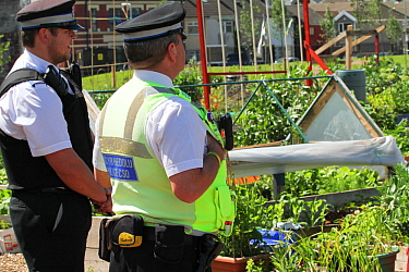 Swansea community police liaising with allotment holders, in community allotment on former football pitch - Vetch field, Swansea West Glamorgan, Wales, UK, June 2006. Editorial use only