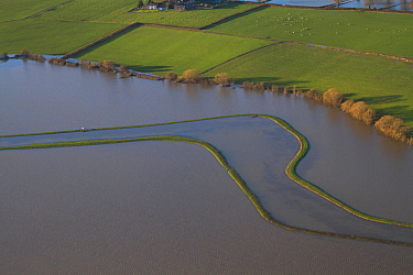 Meander in River Parrett with levees during January 2014 flood, Somerset Levels, England, UK, 9th January 2014.