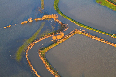 River Parrett with levees and fields during January 2014 flood, Somerset Levels, England, UK, 9th January 2014.