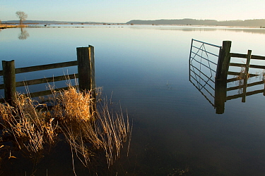 Farm gate reflected in waters of January 2014 floods, West Sedgemoor RSPB Nature Reserve, Somerset Levels, England, UK, 11th January 2014.