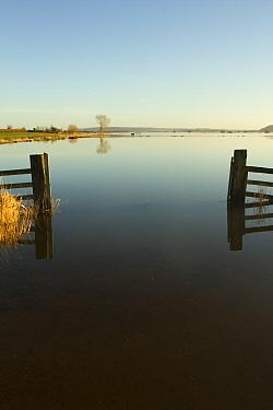 Flooded landscape during January 2014 floods, West Sedgemoor RSPB Nature Reserve, Somerset Levels, England, UK, 11th January 2014.