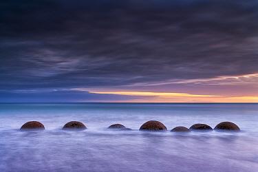 Moeraki Boulder / Kaihinaki on Koekohe Beach at sunrise. 60 Million year old mudstone concretions. Moeraki, Waitaki District, Otago Region, South Island, New Zealand. January, 2012.