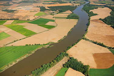 Aerial image of farmland bordering river, Salamanca Region, Castilla y Leon, Spain, May 2011.