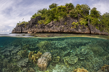 Split level of coral reef and a tropical island. Raja Ampat, West Papua, Indonesia, February 2012.