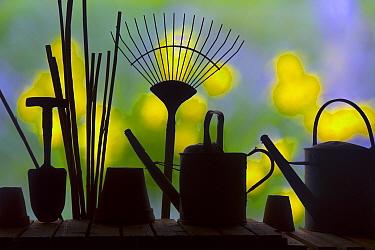 Gardening tools silhouettes against garden flowers.