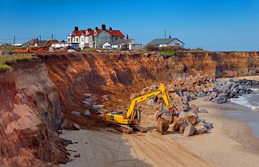 Excavator with grapple used for building sea defences at Happisburgh, Norfolk, UK, March.