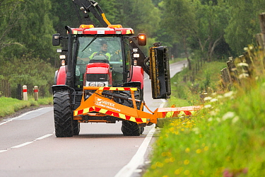 Highway maintainance mowing roadside verge, destroying grassland flowers and plants, A95 near Aviemore, Cairngorms National Park, Scotland, UK, July. July 2016.