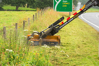 Highway maintainance mowing roadside verge, destroying grassland flowers and plants, A95 near Aviemore, Cairngorms National Park, Scotland, UK. July 2016.