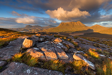 Cul Mor in evening light, Coigach & Assynt, Scotland, UK.September