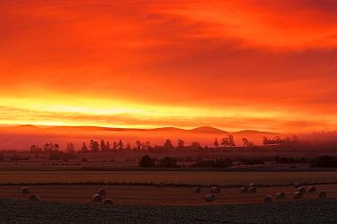 Red dawn sky over farmland, Strathspey, Scotland, UK, October 2017.
