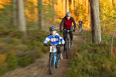 Family mountain biking through forest, Cairngorms National Park, Scotland, UK, November 2011.