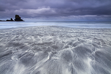 Sea stack and beach, Talisker Bay, Isle of Skye, Scotland, UK.September