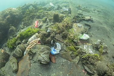 Underwater plastic rubbish such as single use plastic bottles, cups, packaging, labels, waste and woven sacks polluting the seabed, Sulawesi, Indonesia. November 2018.
