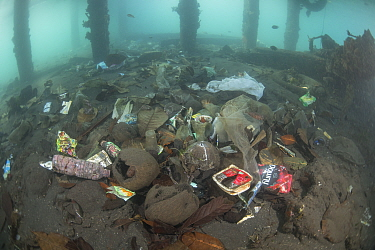 Underwater plastic rubbish such as single use plastic bottles, cups, packaging, labels, waste and woven sacks polluting a coral reef near a jetty, Sulawesi, Indonesia. November 2018.