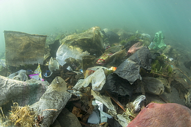 Underwater plastic rubbish such as single use plastic bottles, cups, packaging, labels, waste and woven sacks polluting a coral reef, Sulawesi, Indonesia. November 2018.