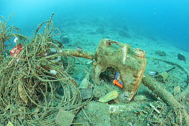 Rubbish under a ships' harbour where some species are able to survive, Maluku, Indonesia, November 2018.