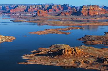 Shoreline of Lake Powell, seen from Alstrom Point on Romana Mesa. Glen Canyon National Recreation Area, on the Arizona/Utah border, USA, January.