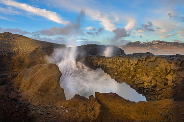 Spray shoots up from a blow hole on the Dyrholaey Peninsula, near Vik, Iceland, March.
