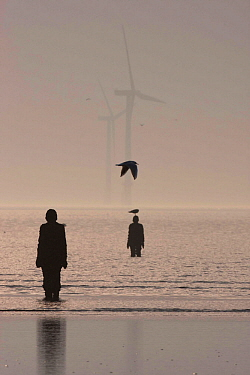 Silhouettes of Sir Antony Gormley's sculptures 'Another Place' on Crosby beach, with wind turbines in Liverpool bay. Mersey Estuary, England, UK, October 2011.