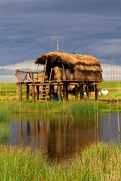Location for filming 'The Vikings', TV series about the life of a Viking village. Built in a Kilcoole marsh wetland, a special site protected by Irish Govt, for its biological / conservation v...